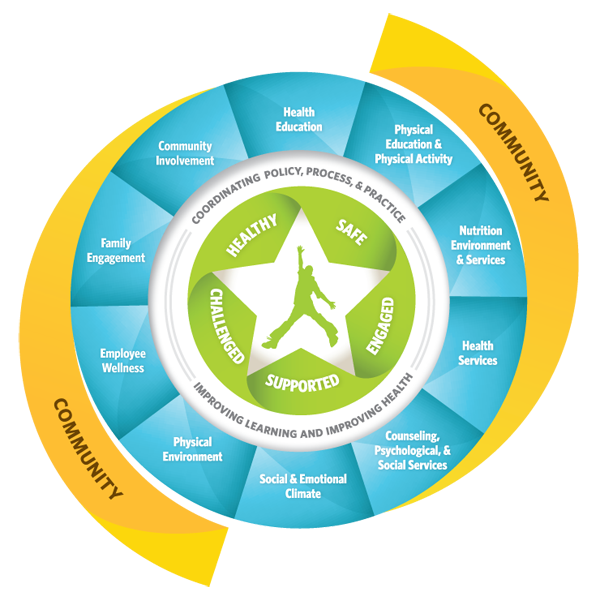 At the center of the model you will find an image of a child  The WSCC (Whole School, Whole Child, Whole Community) model is built upon the five tenets of healthy, safe, engaged, supported, and challenged. These can be found in the center ring of the model surrounding the image of the child.  The coordination of policies, processes, and practices are (represented by a white band around the five Whole Child Tenets) Around the white band representing the tenets you will find the ten components of the WSCC mod